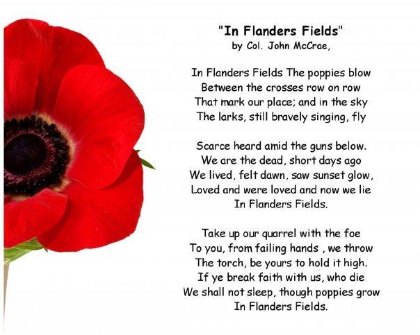 flanders-field